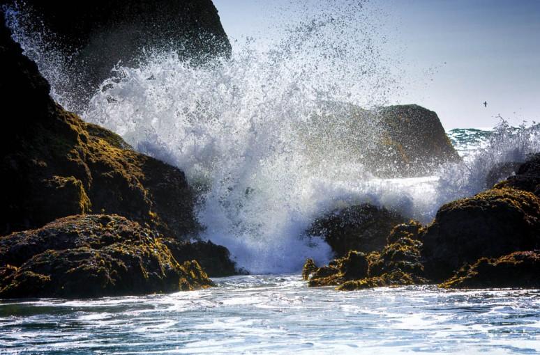 wave-3630