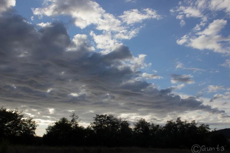 clouds-8905