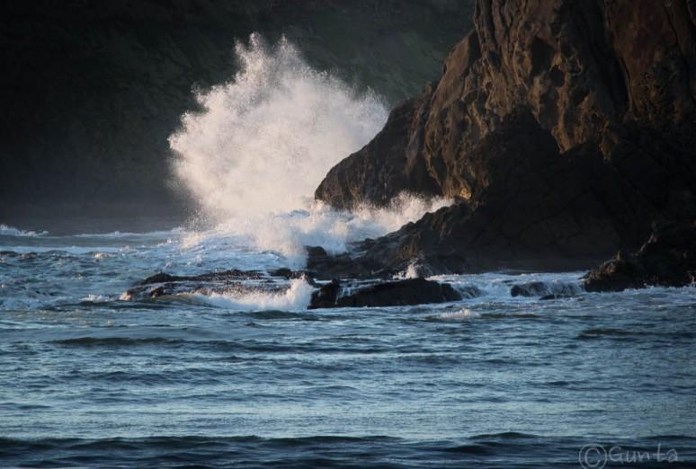 wave-0887