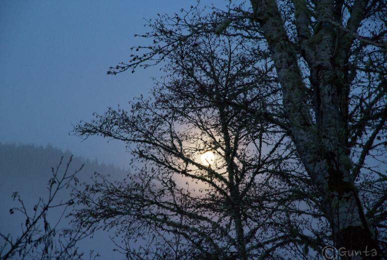 moon-0616