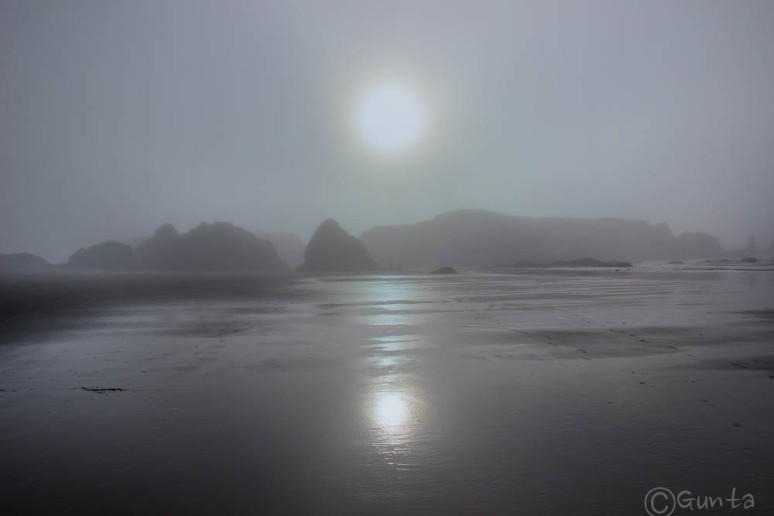 fog-1639