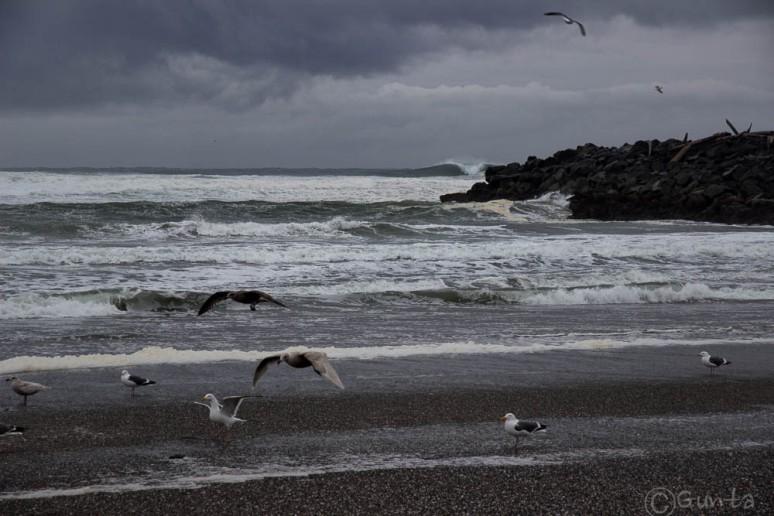 waves-2207