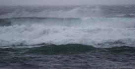 waves-3141