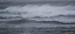 waves-3164
