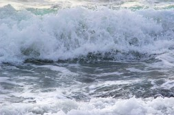 wave-3461