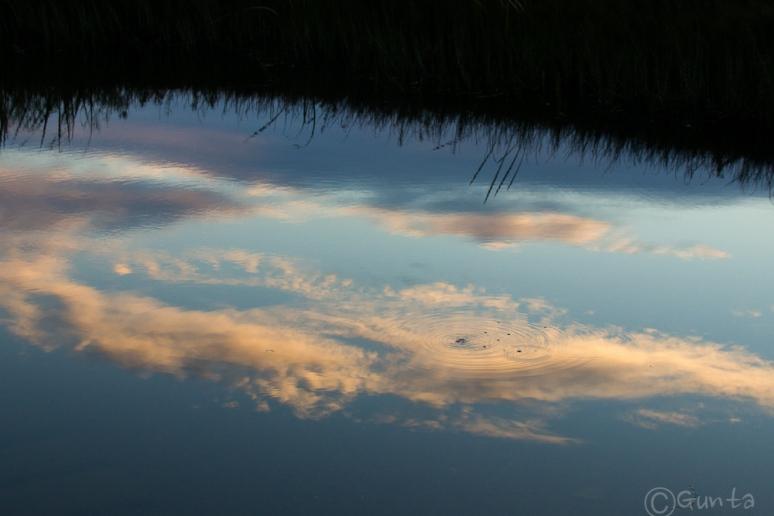 Floras_Lake-6716