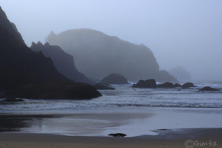 fog-1631