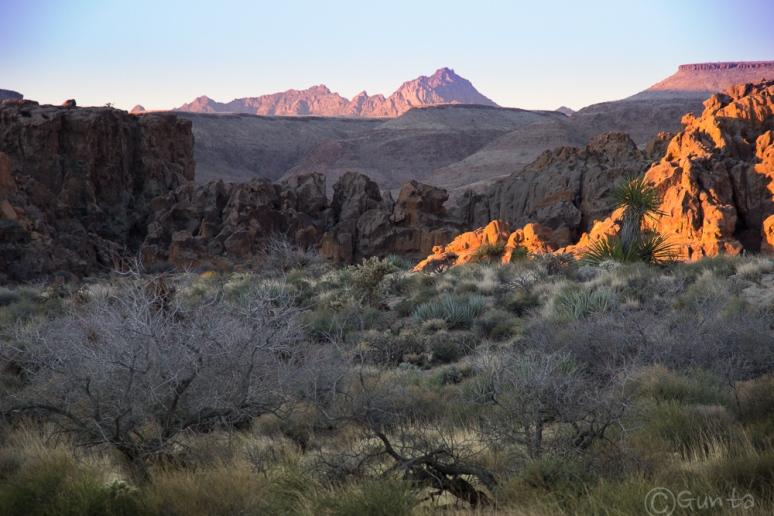 Mojave_sunrise-0165