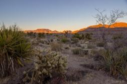 Mojave_sunset-0139