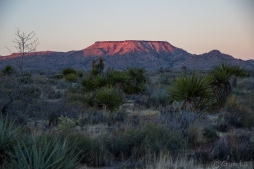 Mojave_sunset-0146