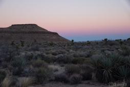 Mojave_sunset-0147