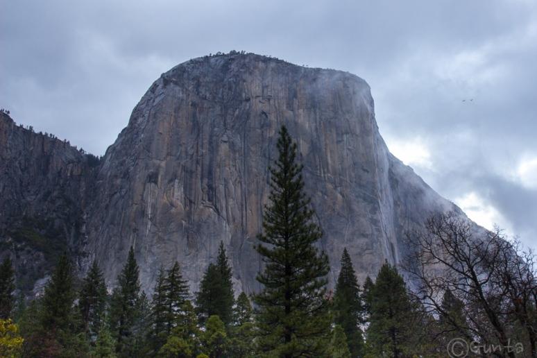 Yosemite-0041