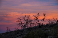 Desert sunset colors