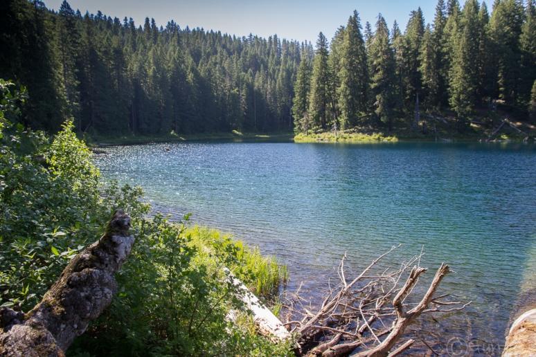 Clear_Lake-4121