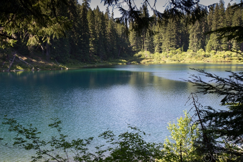 Clear_Lake-4124