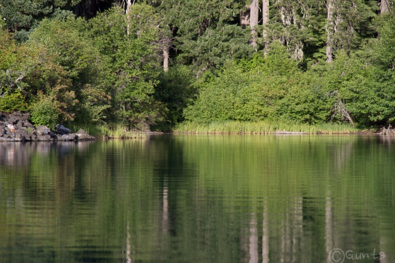 Clear_Lake-4170
