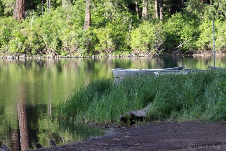 Clear_Lake-4257