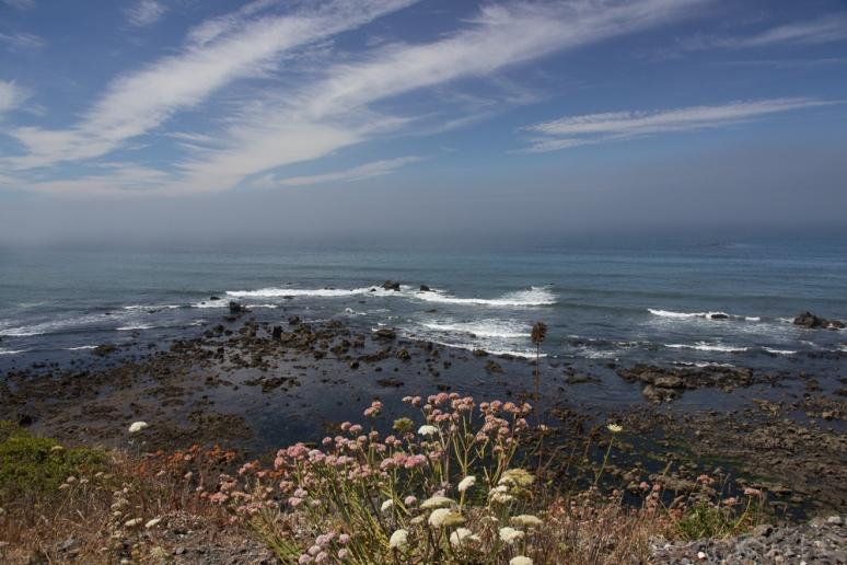 South_Coast-4812