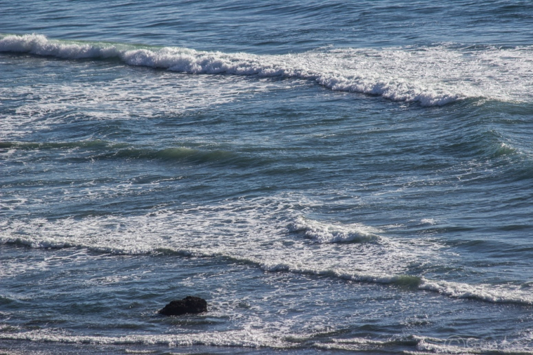 waves-5648