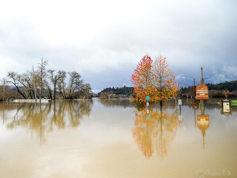 floods-0063