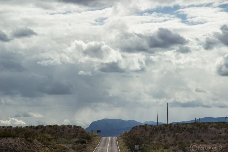 Bosque_del_Apache-7364