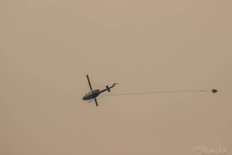 smog-2914