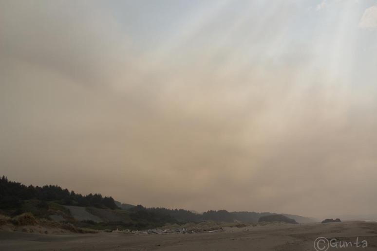 smog-2931