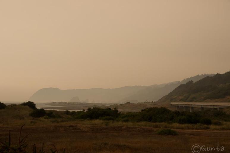 smog-2965