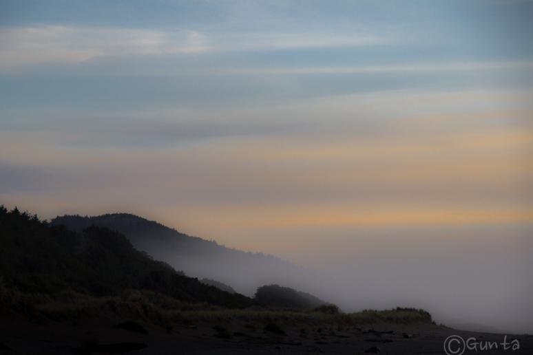 mist-4757