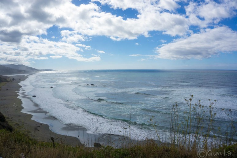 Pacific_NW-07505